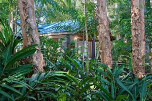 Day spa set within the rainforest