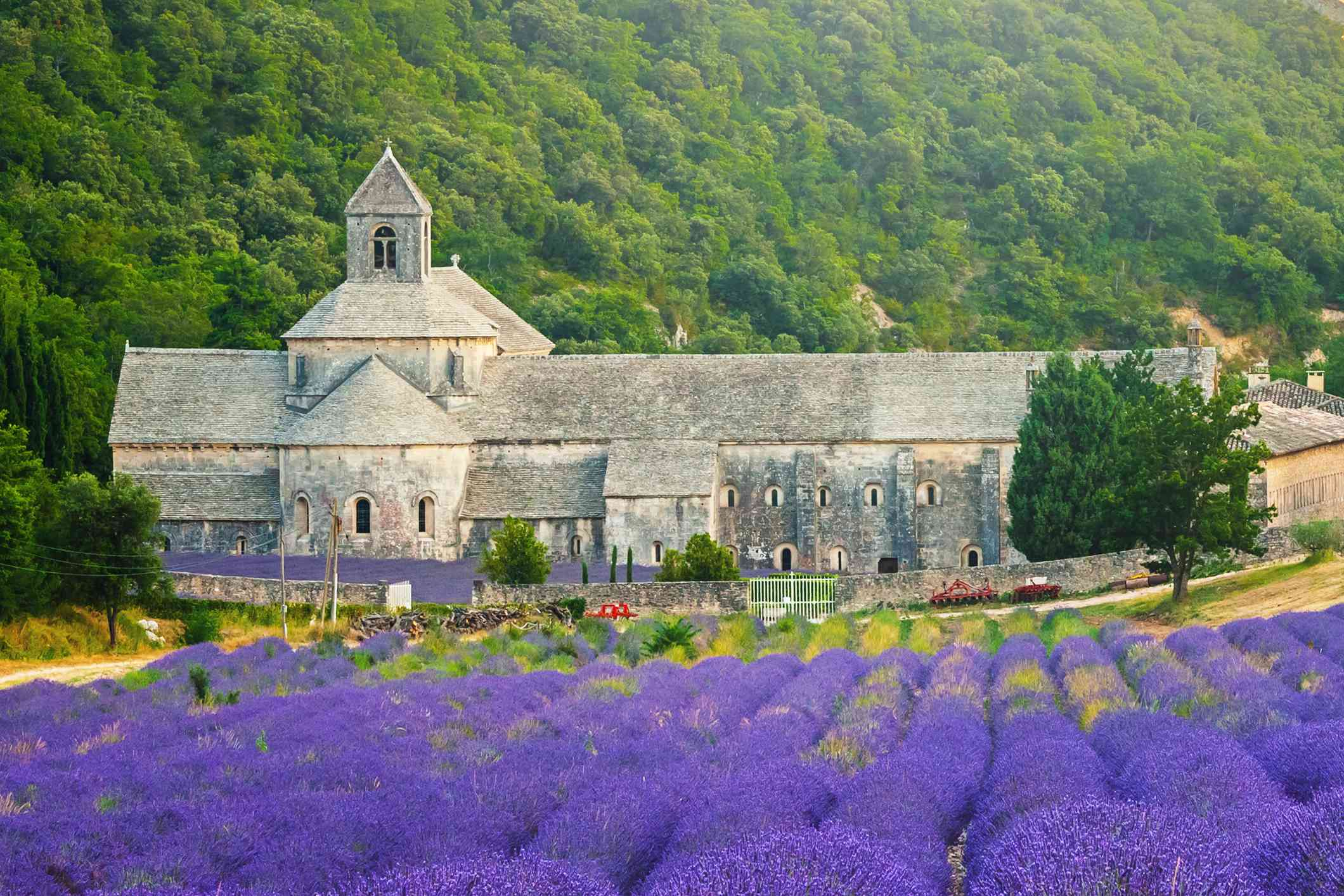 Gordes, Sénanque Abbey and lavender fields in France