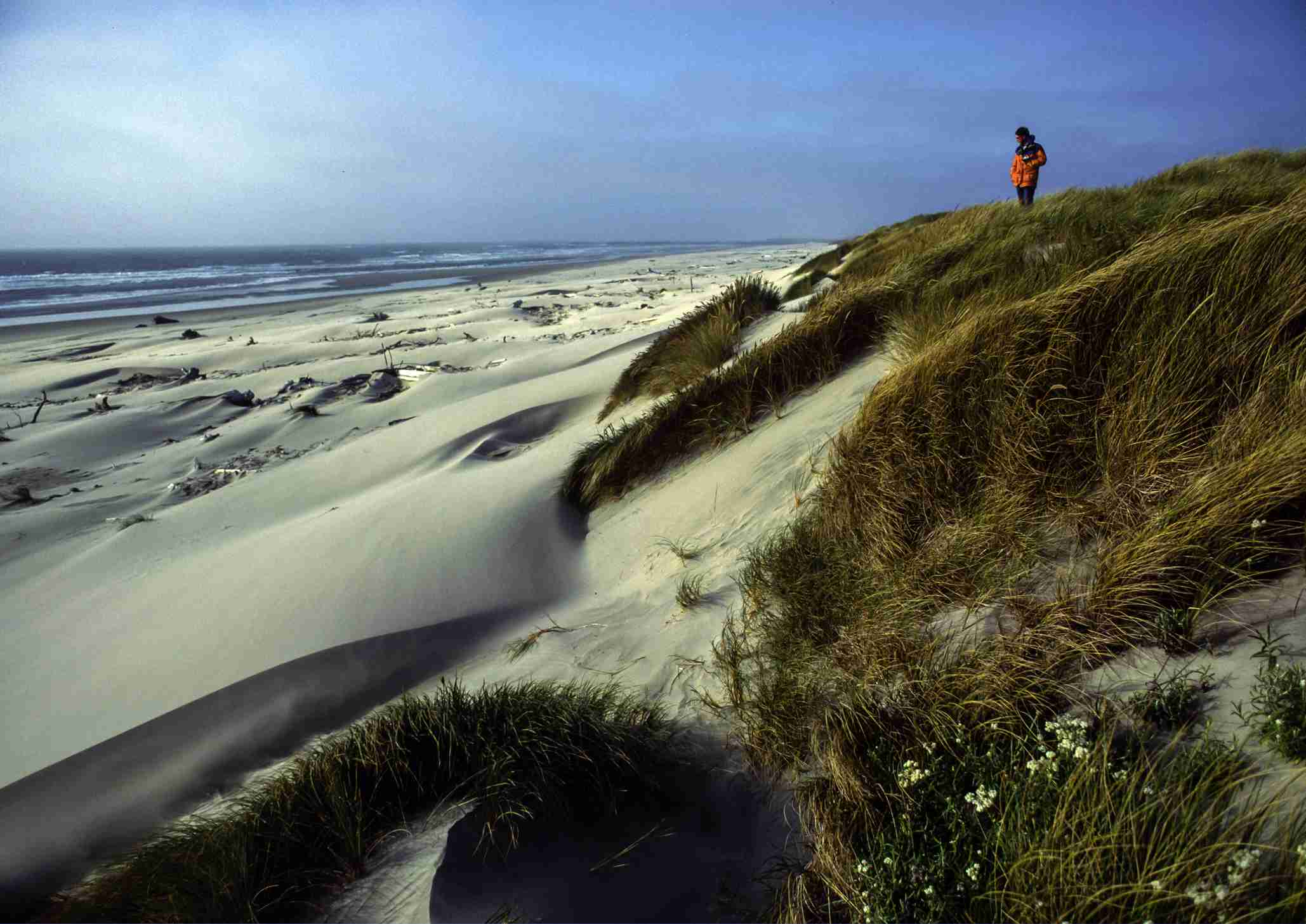 florence, oregon: best activities and attractions
