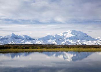 Denali reflection in Tundra pond