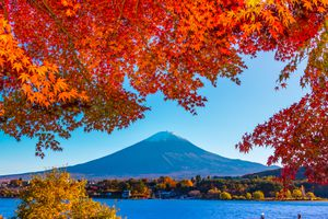 Colorful leaves and Mount Fuji during October in Asia