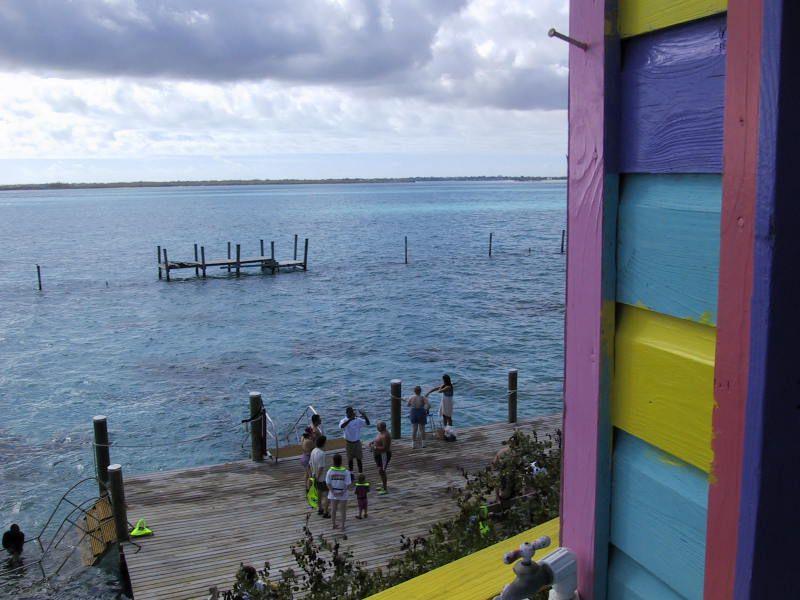Snorkeling and Swimming with Sting Rays Lagoon near Nassau