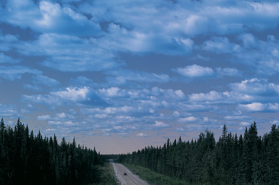 A car on a road through a forest in Canada's Northwest Territory