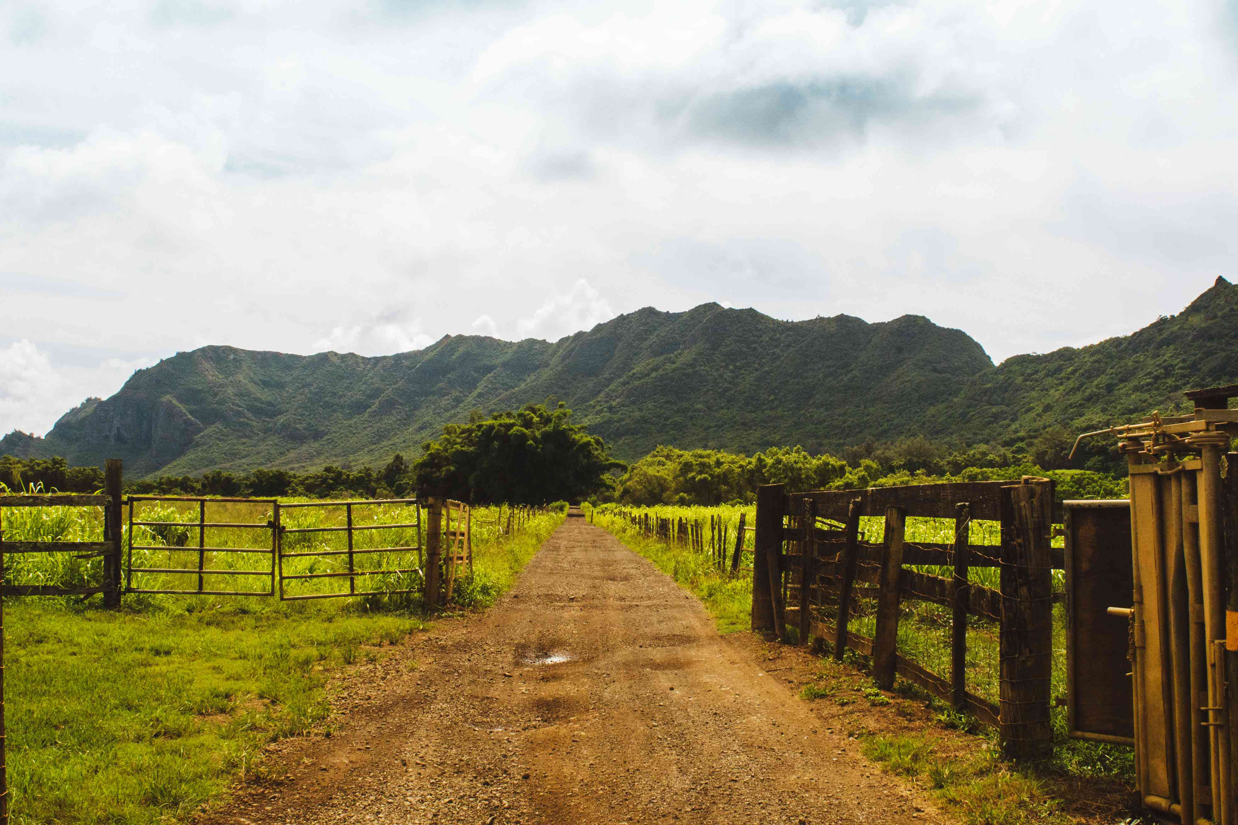 Gate entering Kipu Ranch