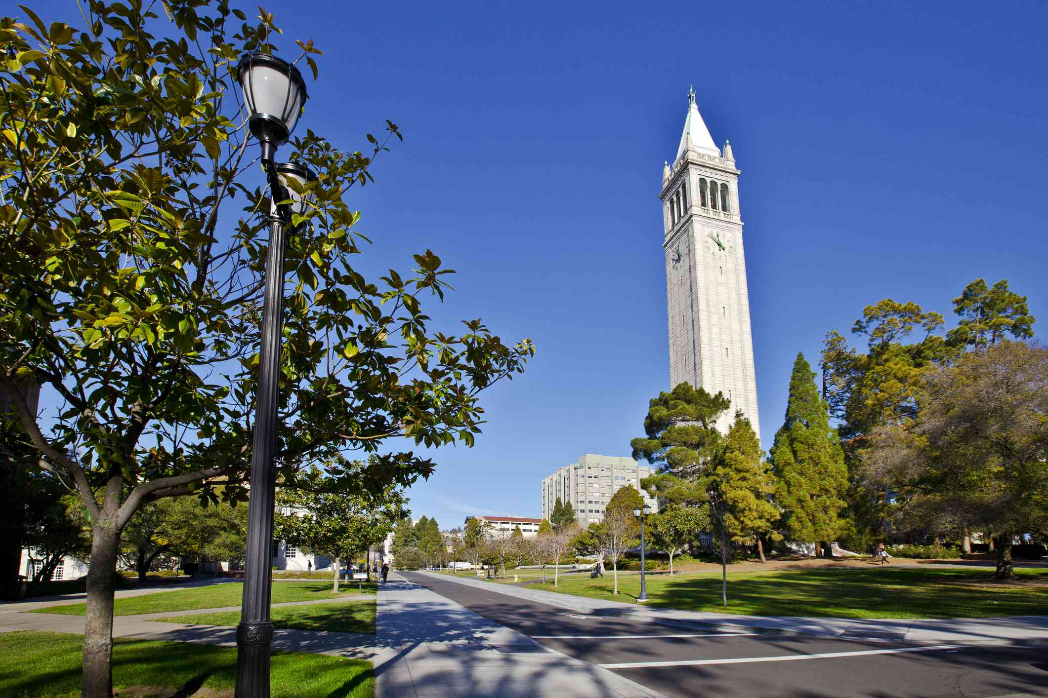 The iconic Sather Tower on UC Berkeley's campus