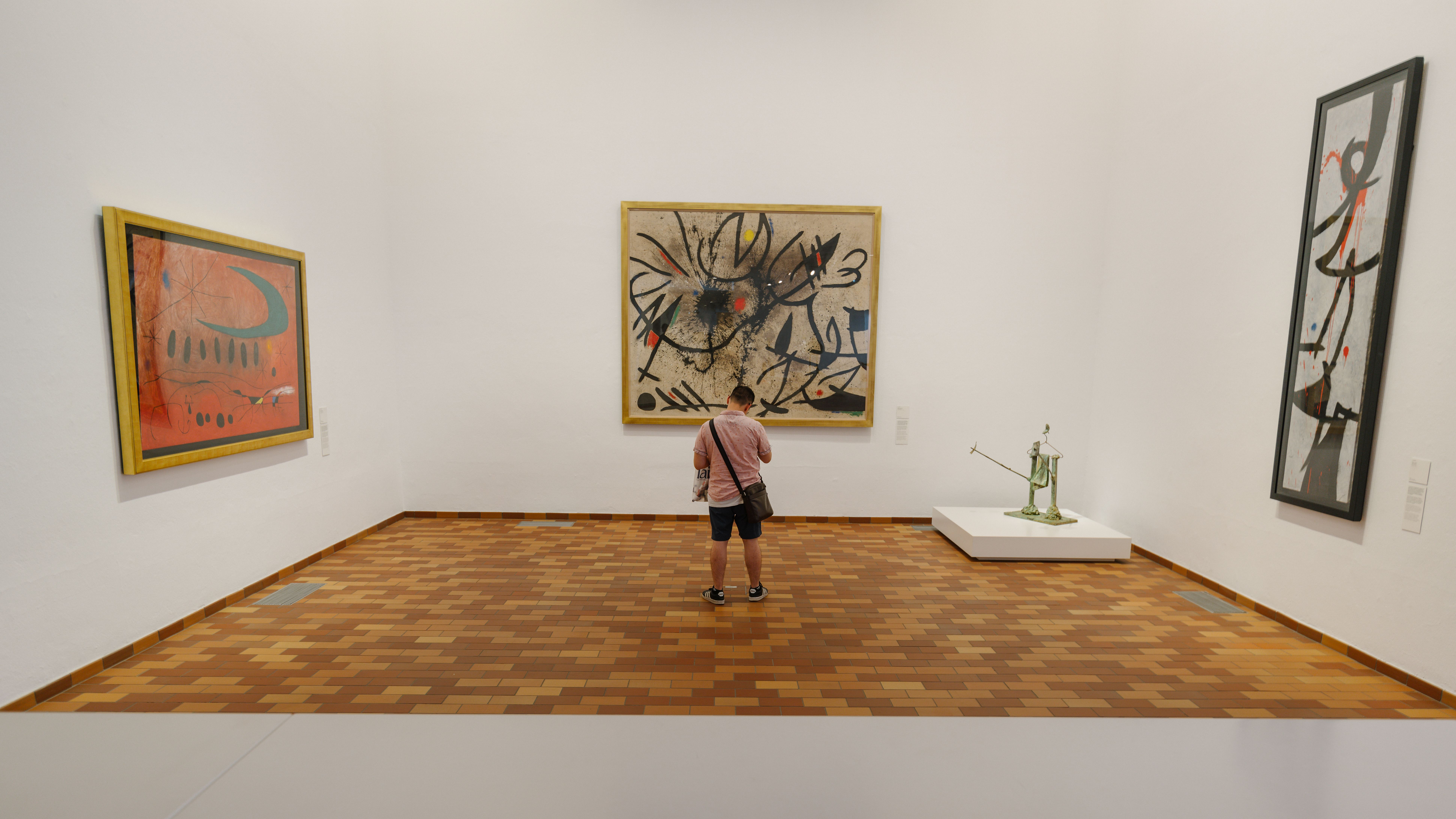 A man standing in front of a Joan Miro painting
