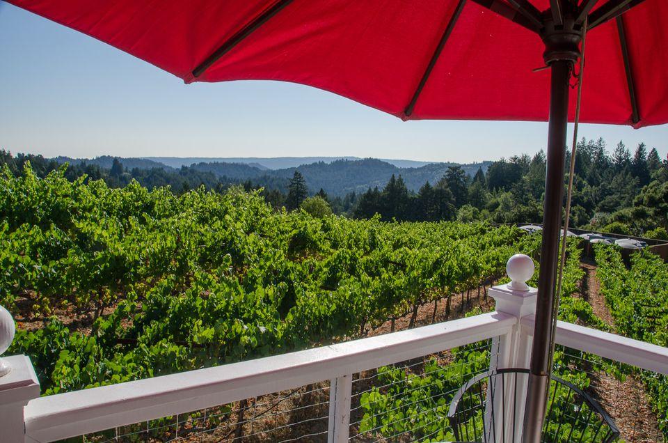 The View from Burrell School Winery, Santa Cruz