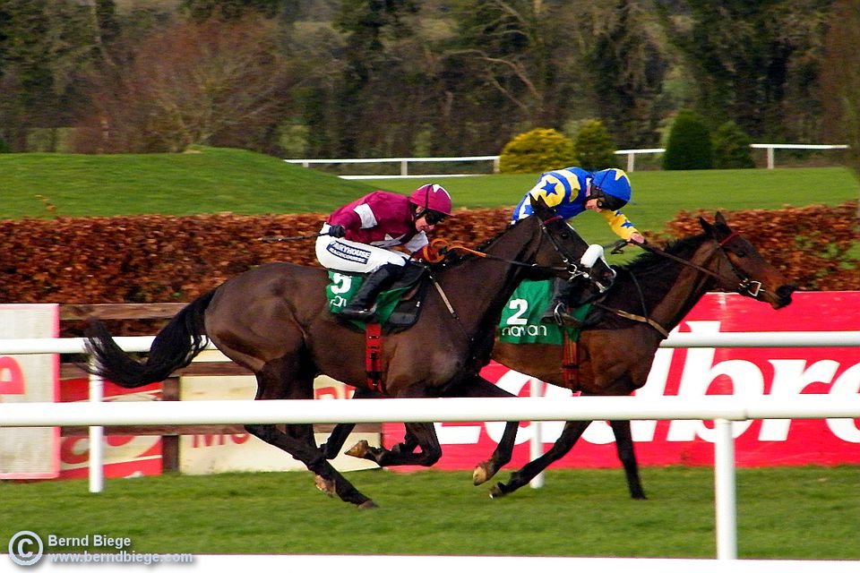 And they're off ... horse racing in Ireland is a spectator sport you can enjoy all the year round (with the odd cancellation due to frozen or flooded tracks).