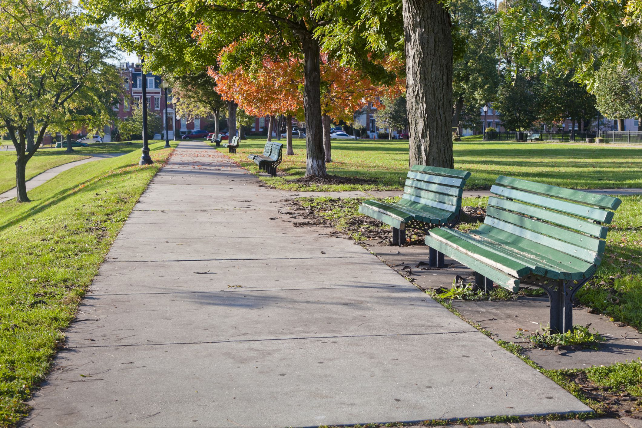 Green wooden benches in Baltimore's Federal Hill Park