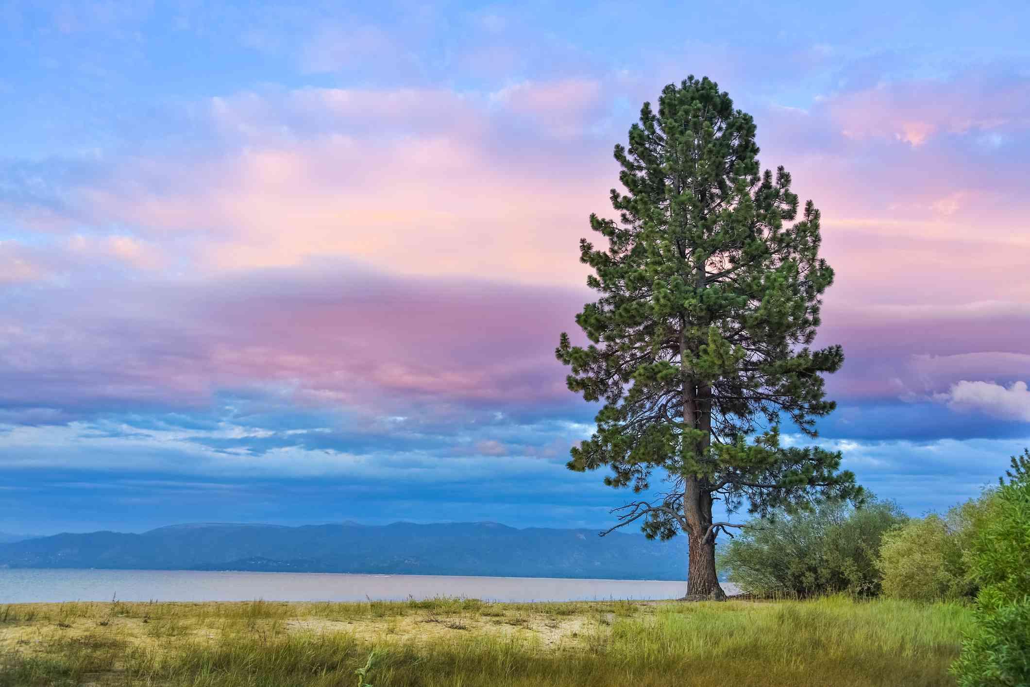 Sunset over Lake Tahoe Pope Beach