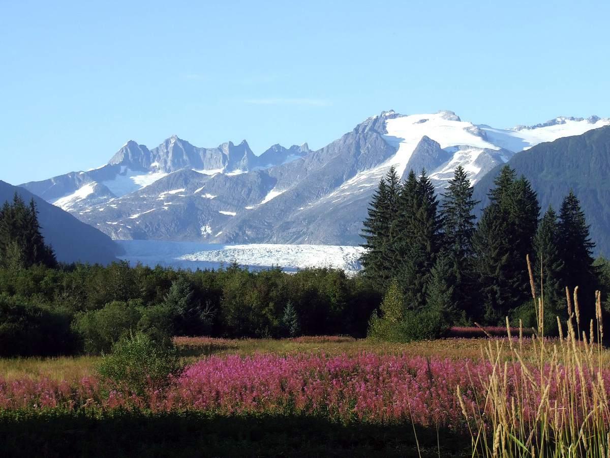 Mendenhall Glacier and Ice Fields near Juneau, Alaska