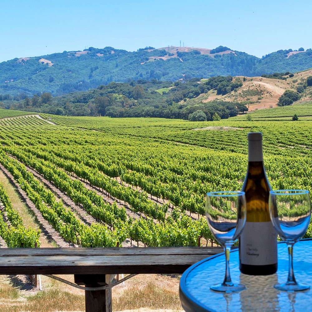 The 11 Best Wineries in Sonoma County