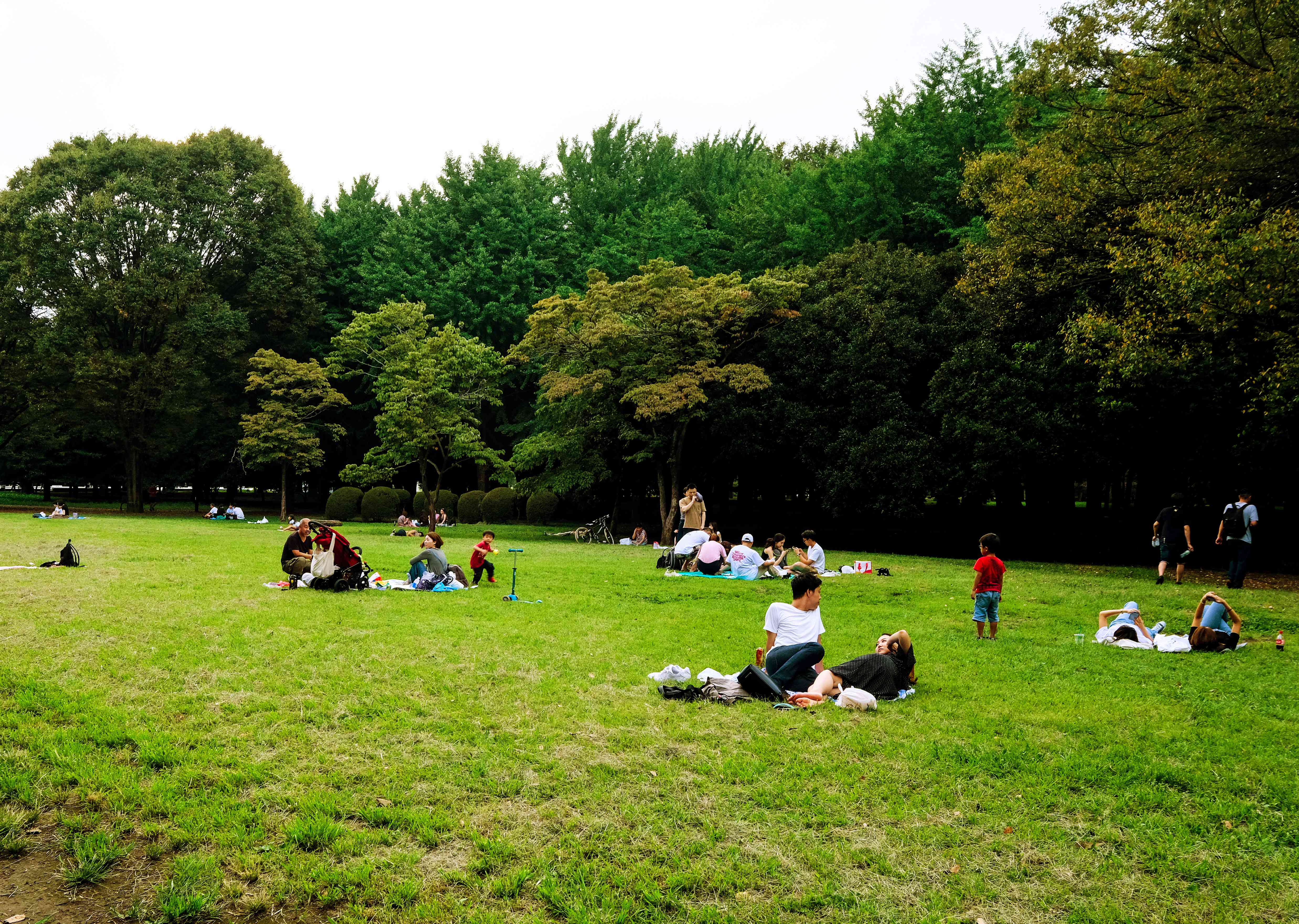 People laying on the lawn in Yoyogi Park