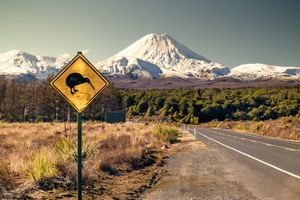 Road sign with skiing Kiwi on it, Mt Ngaruhoe on the background, Ruapehu region, New Zealand