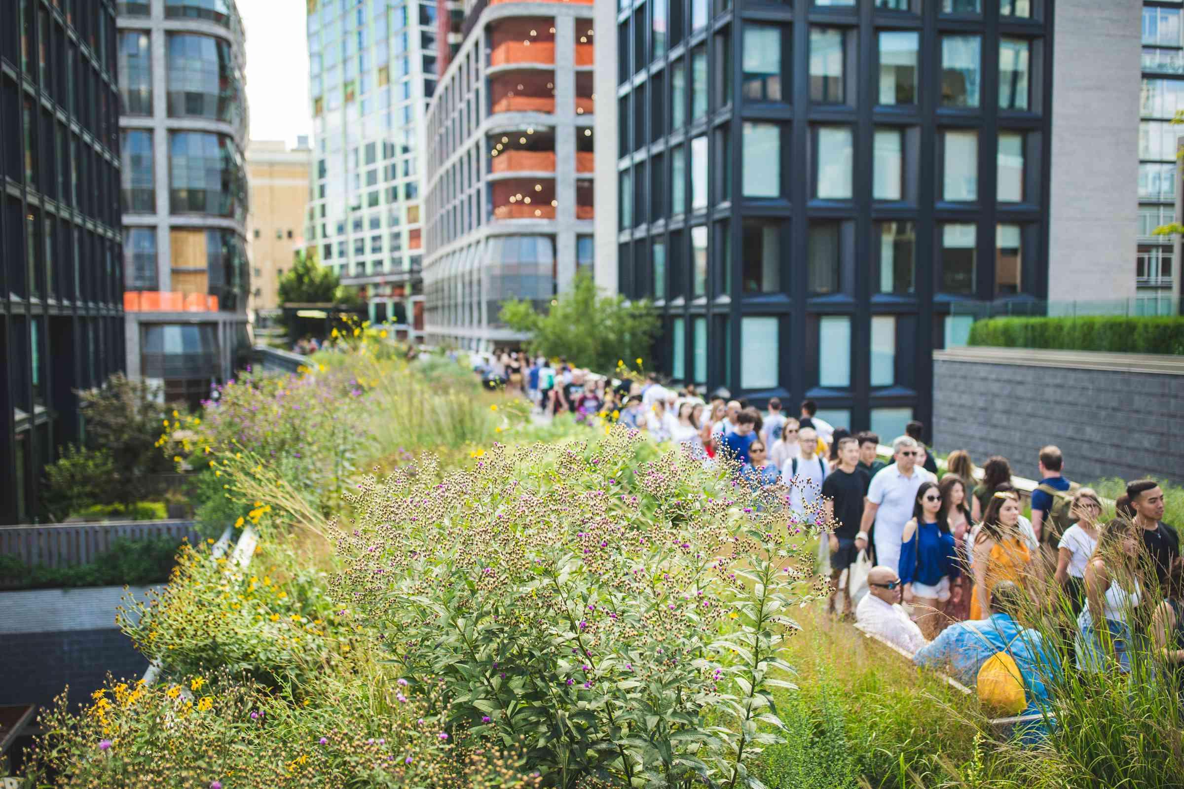 The High Line, NYC, NY