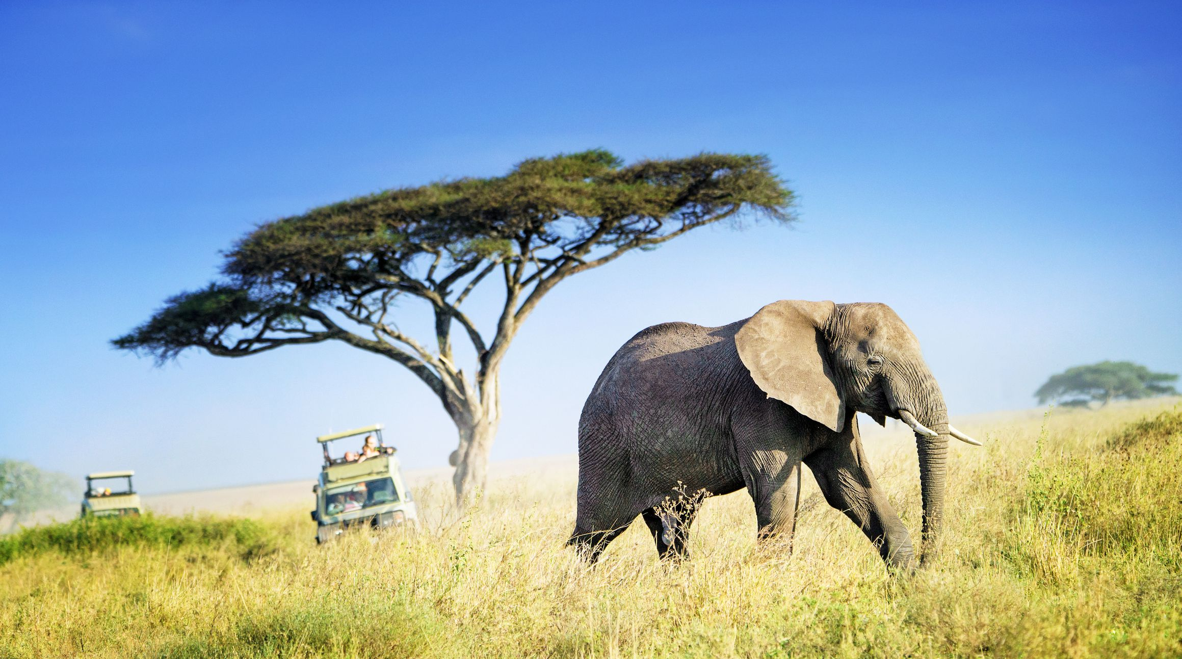 Best Destinations To Visit In Tanzania
