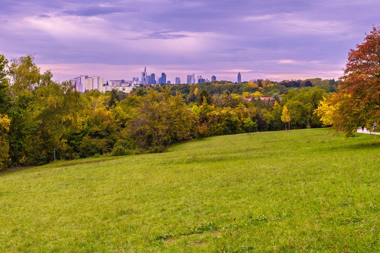 The 9 Best Parks in Frankfurt