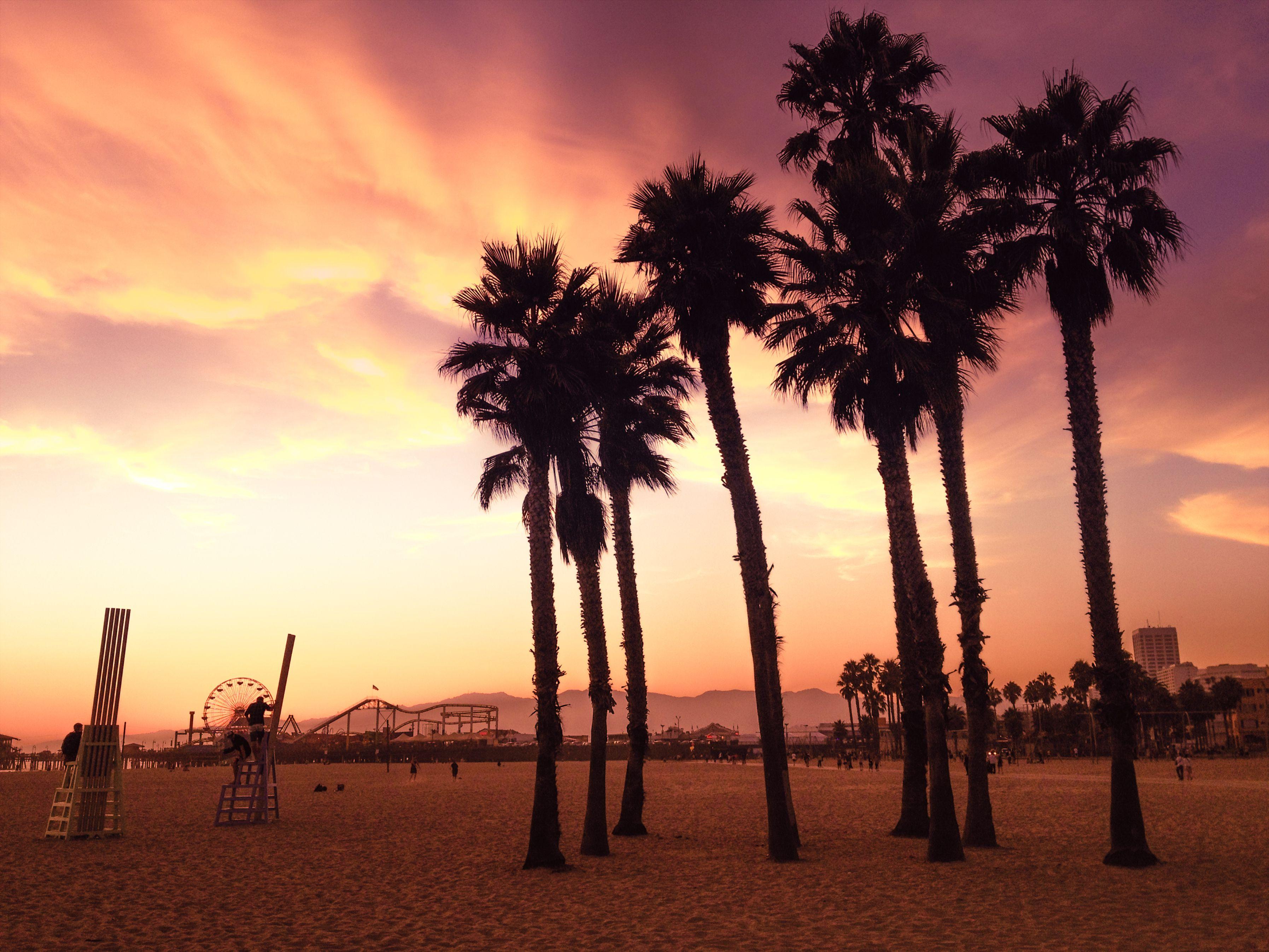 Puesta de sol en la playa de Santa Mónica con palmeras