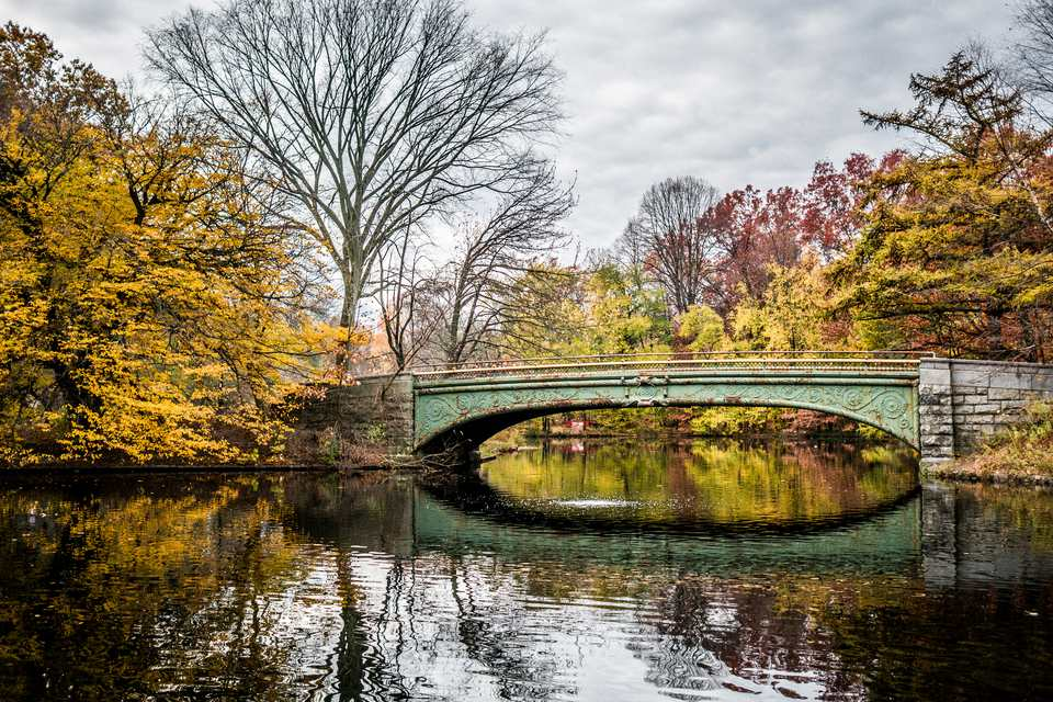 Fall image of bridge at prospect park in new york