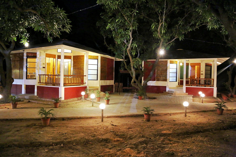 Mango Tourism in India: 14 Top Mango Farms and Festivals