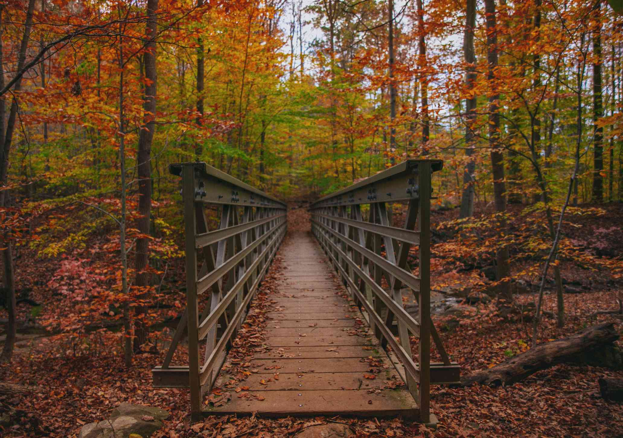 A hike to see the fall colors in Ohio
