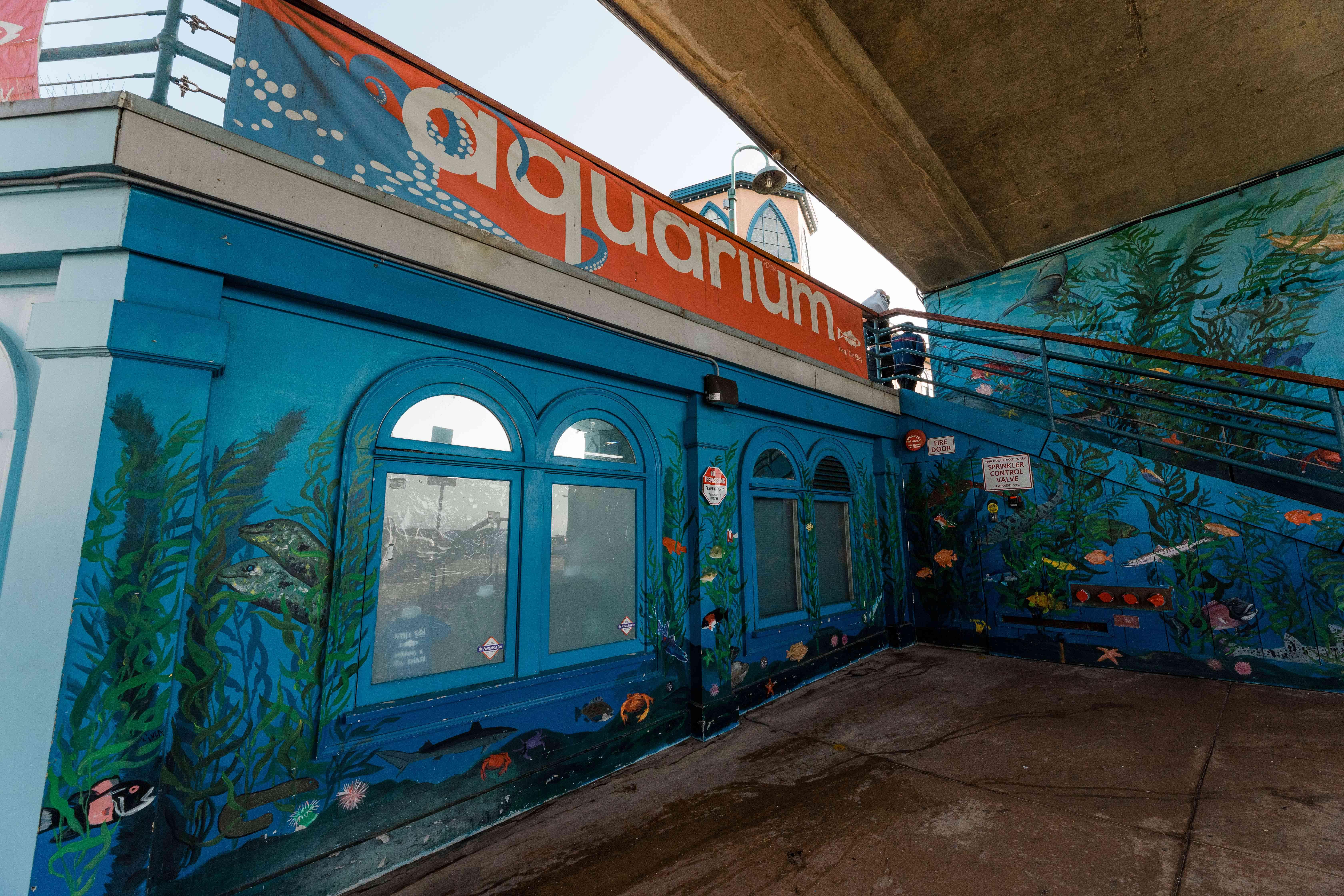 Santa Monica Pier Aquarium in CA