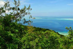 Castaway Island, Fiji