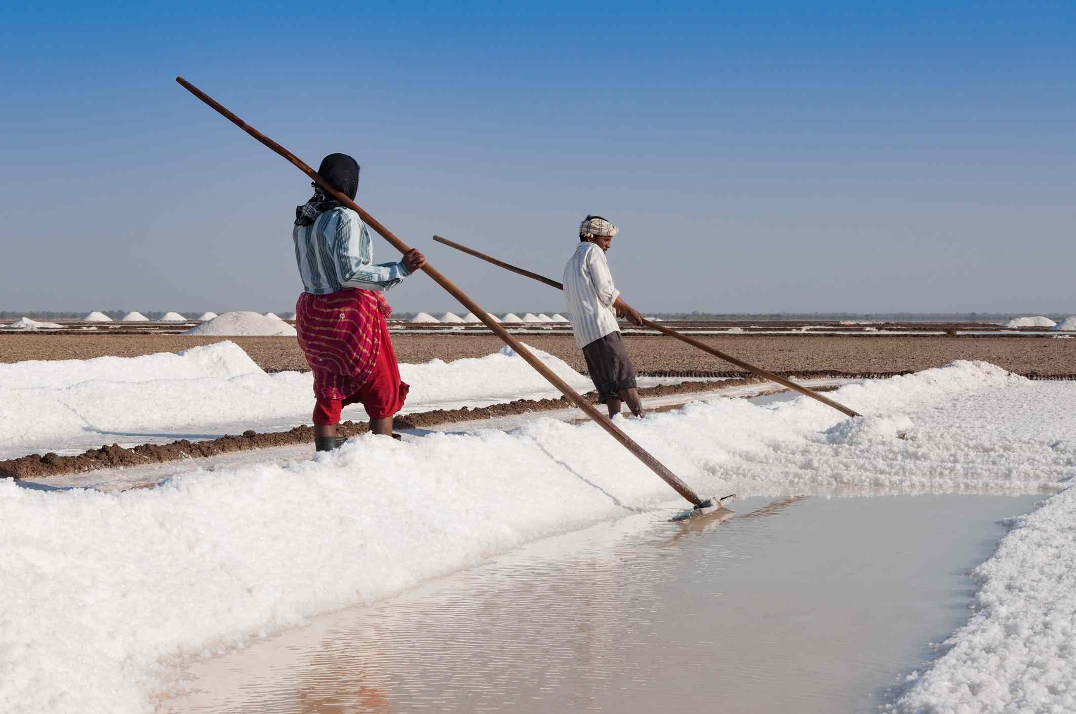 Salt workers in the Little Rann of Kutch, Gujarat