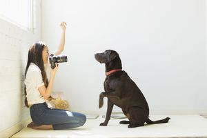 Woman photographing dog in studio