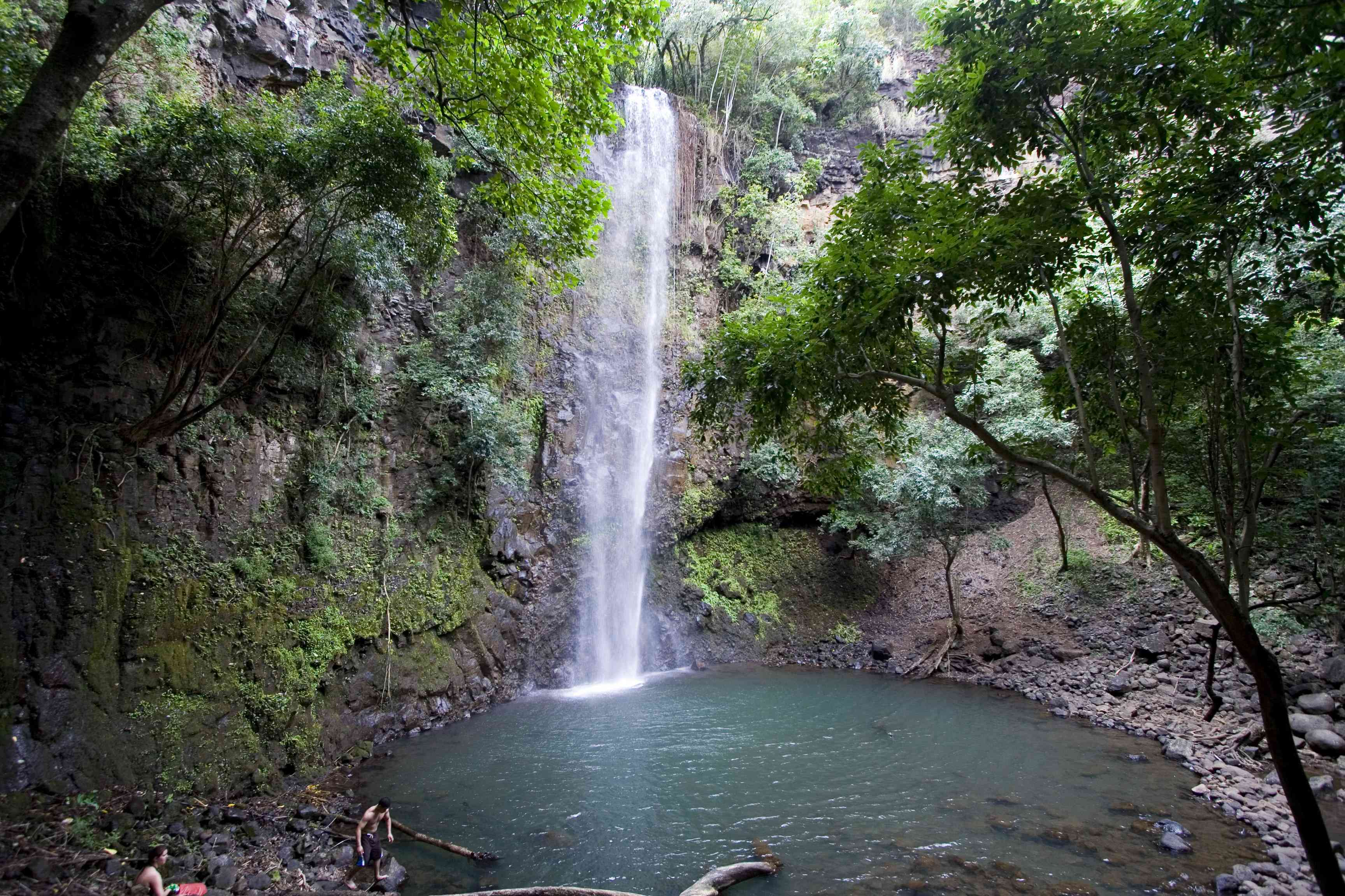 Uluwehi Falls or Secret Falls in Kauai with a pond and trees