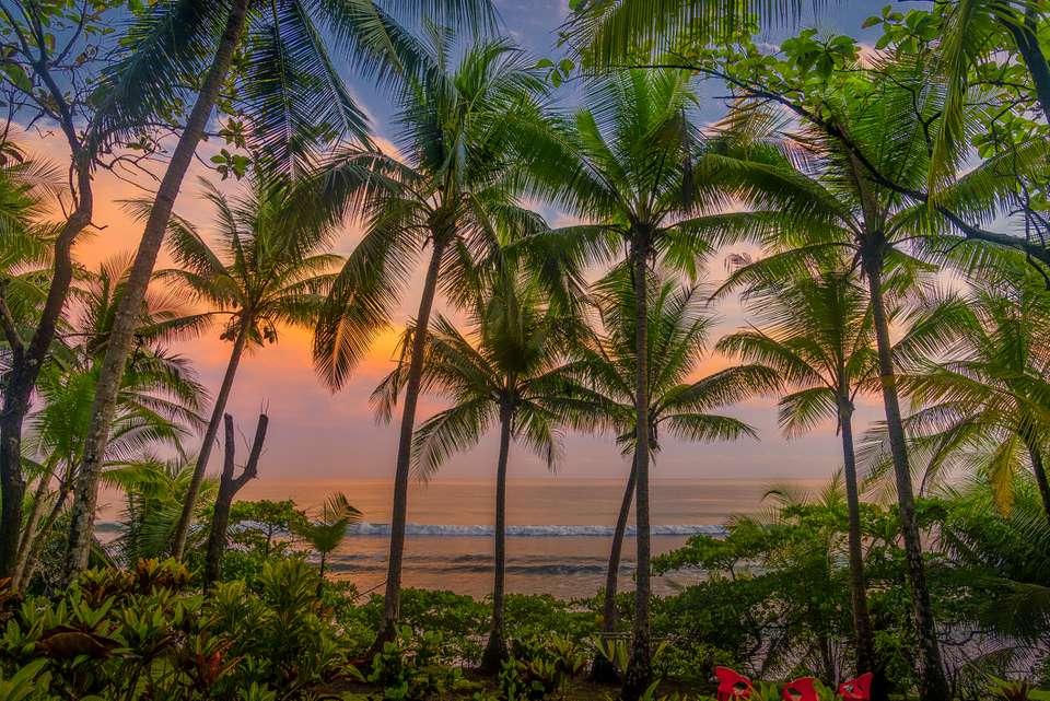 Puesta de sol tropical a través de palmeras en el Parque Nacional Corcovado, Costa Rica