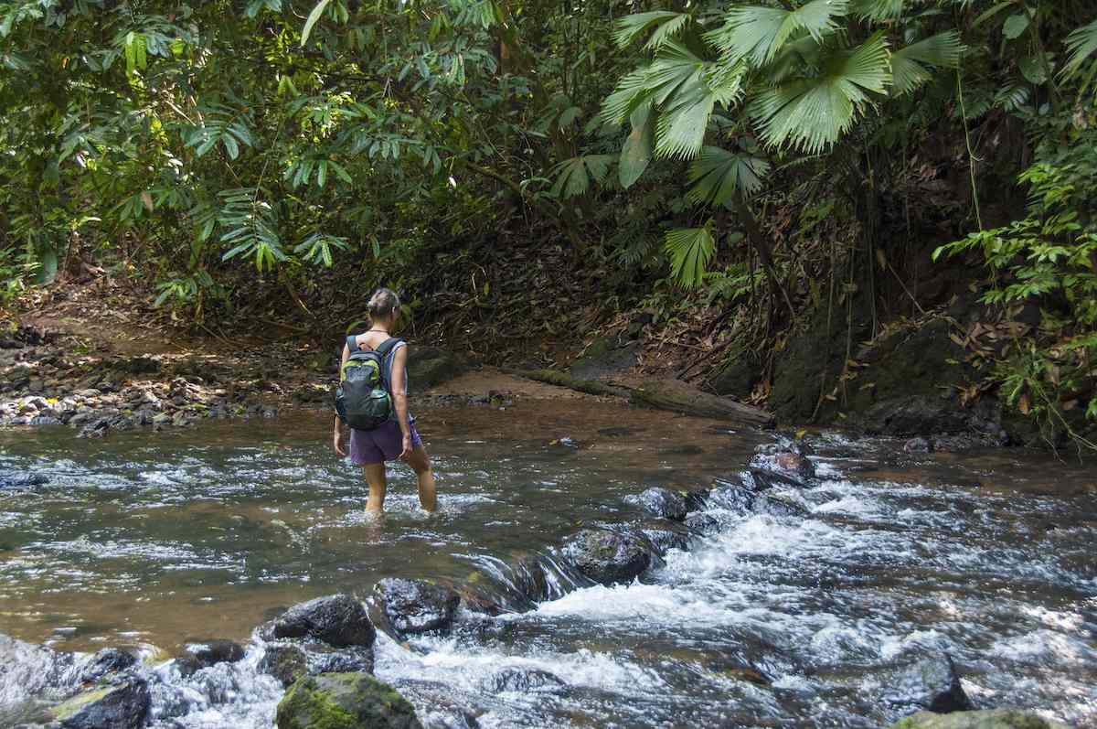 hiking Corcovado National Park, Costa Rica