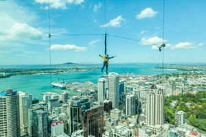 Bungee jumping man from Auckland sky tower.
