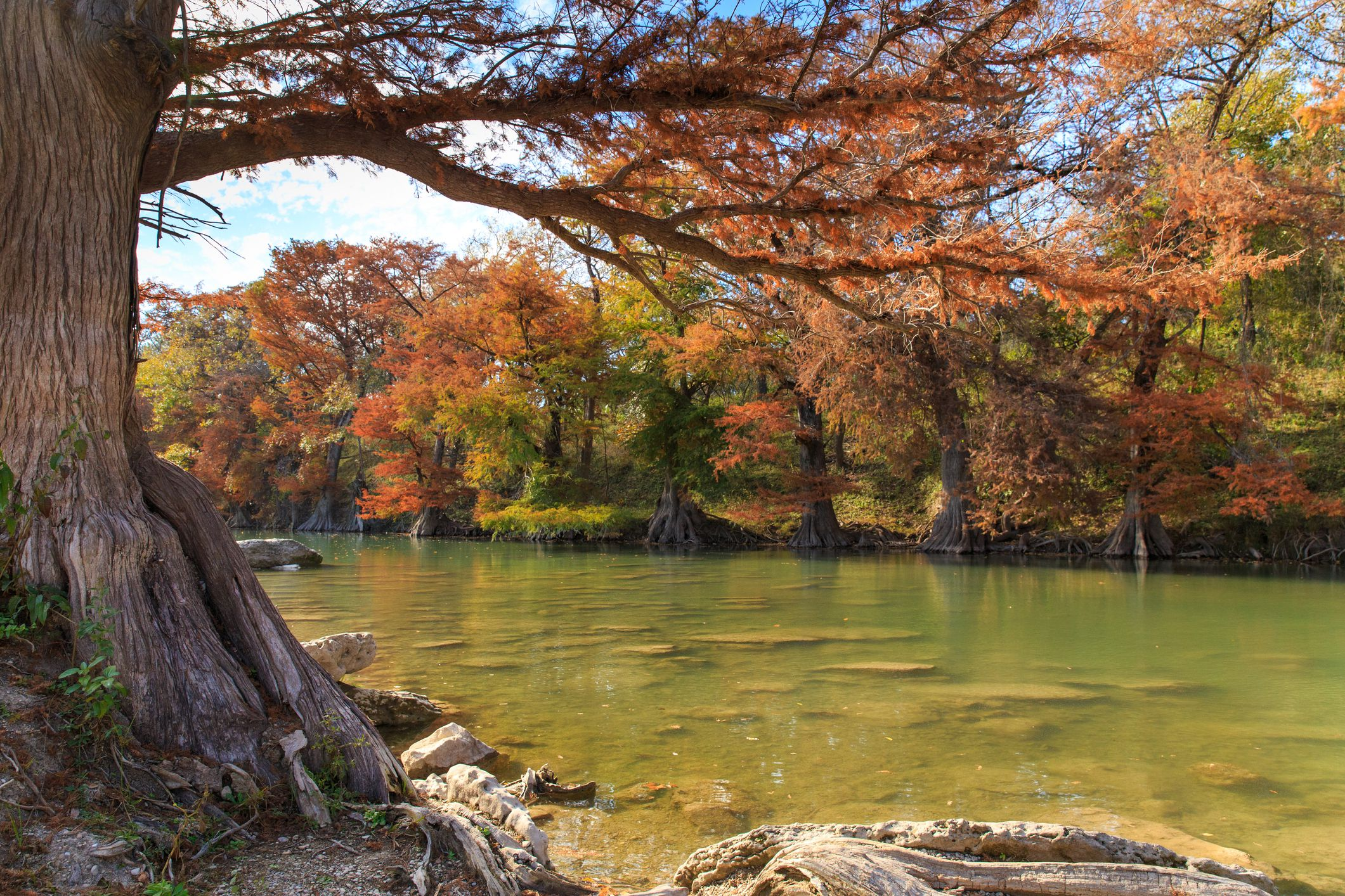 A Guide to James Kiehl River Bend Park: A Texas Hill Country Gem