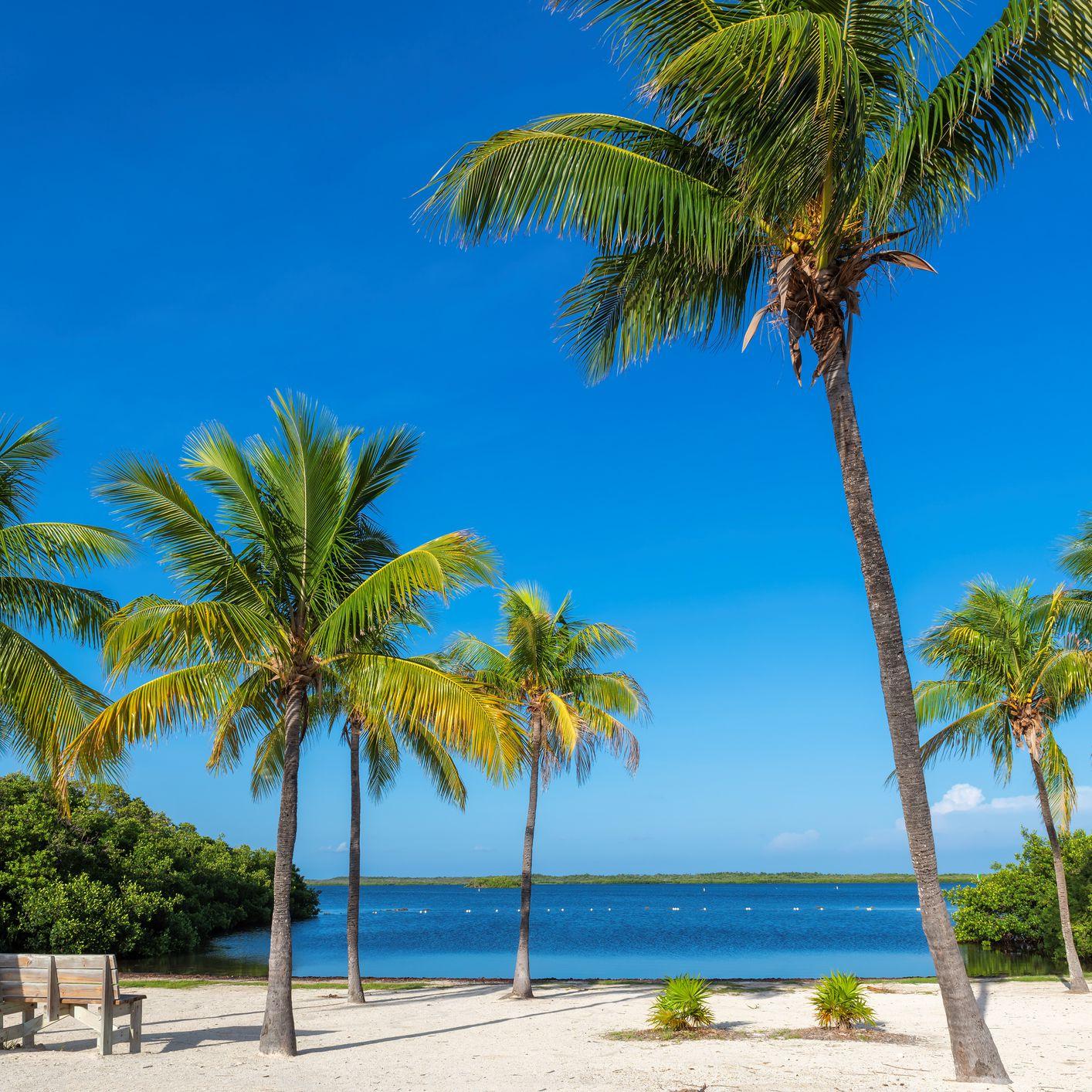The 5 Best Florida Beach Towns