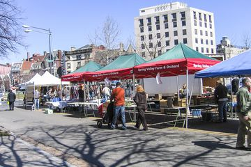 Shoppers browse the Dupont Circle Farmers Market