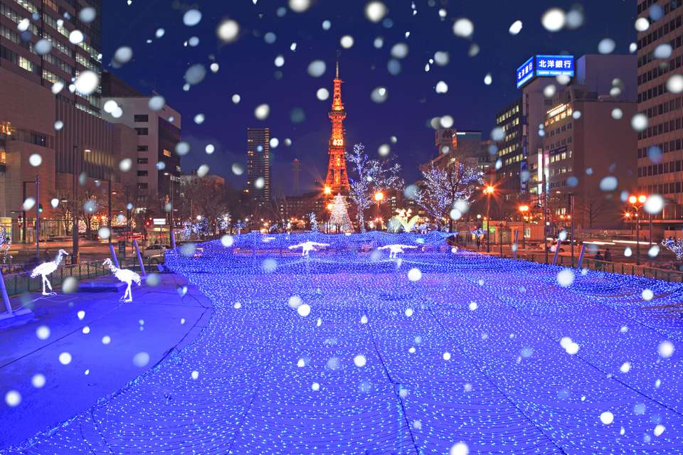 Snow and Christmas lights in Sapporo, Japan