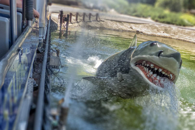 Bruce, the Jaws Shark at Universal Studios