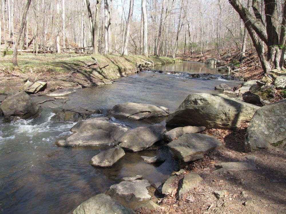 Rock Creek at Lake Needwood Park