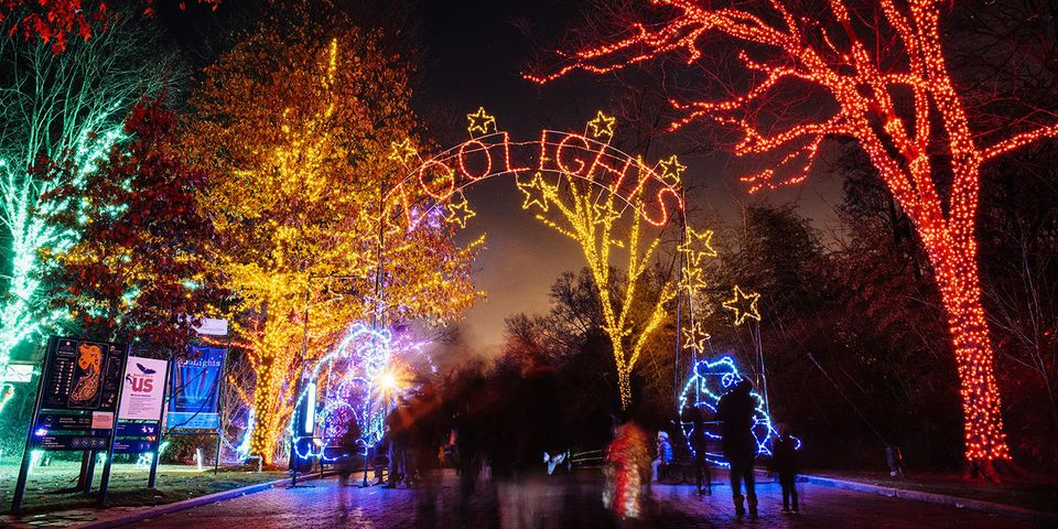 National Zoo Zoolights - Washington, D.C. Area Christmas Light Displays 2018