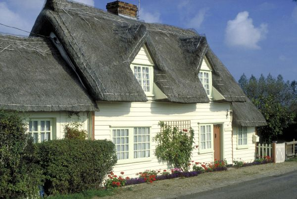 Essex cottage - Country cottage with Thatch and Weatherboarding