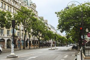 Tree lined Grands Boulevard