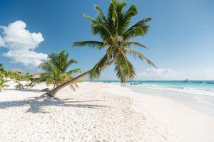Tropical Beach, Tulum, Mexico