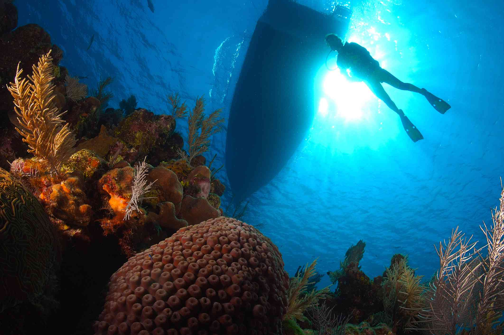 The World's Cheapest Places to Get Scuba Certified
