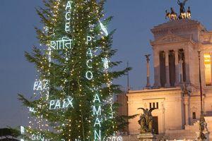 Christmas tree in Rome, Italy