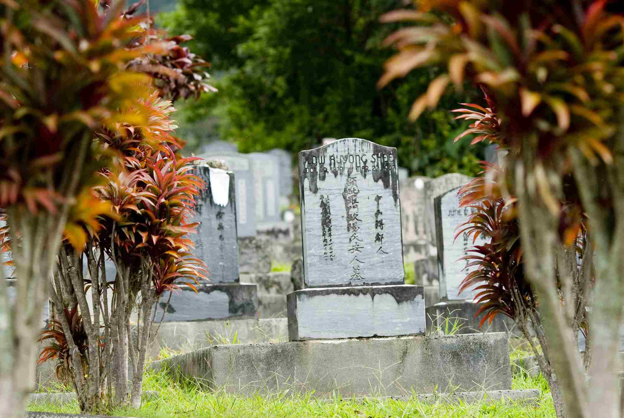 Hawaii, Oahu, Manoa Valley, Chinese Cemetery at Woodlawn, well-known for being haunted.
