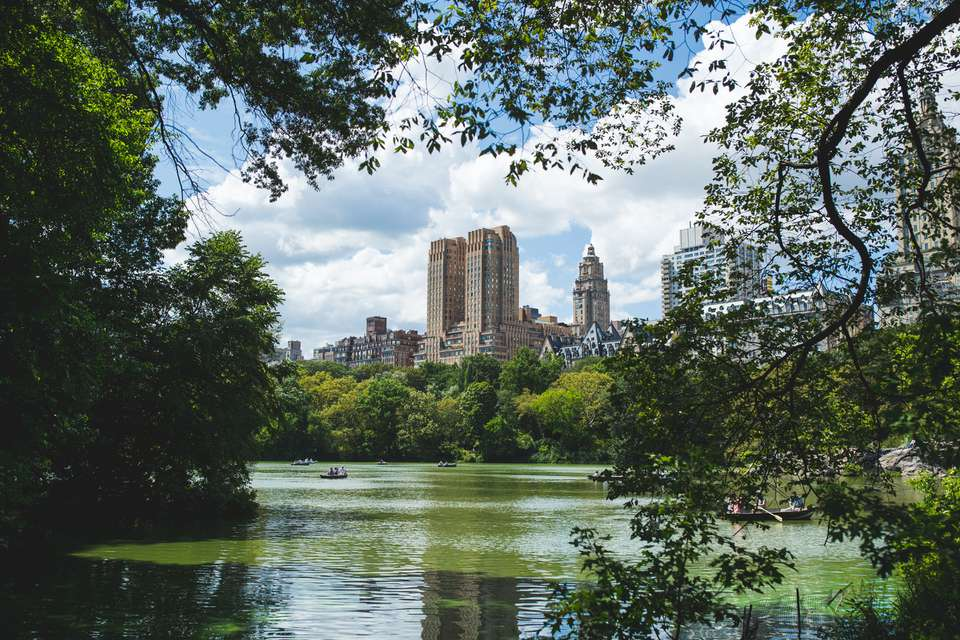 City view from Central Park, New York City