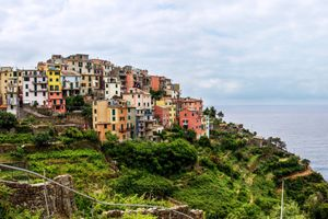 Colorful buildings sitting on top of a green grassy hilltop overlooking to the ocean in Cinque Terre