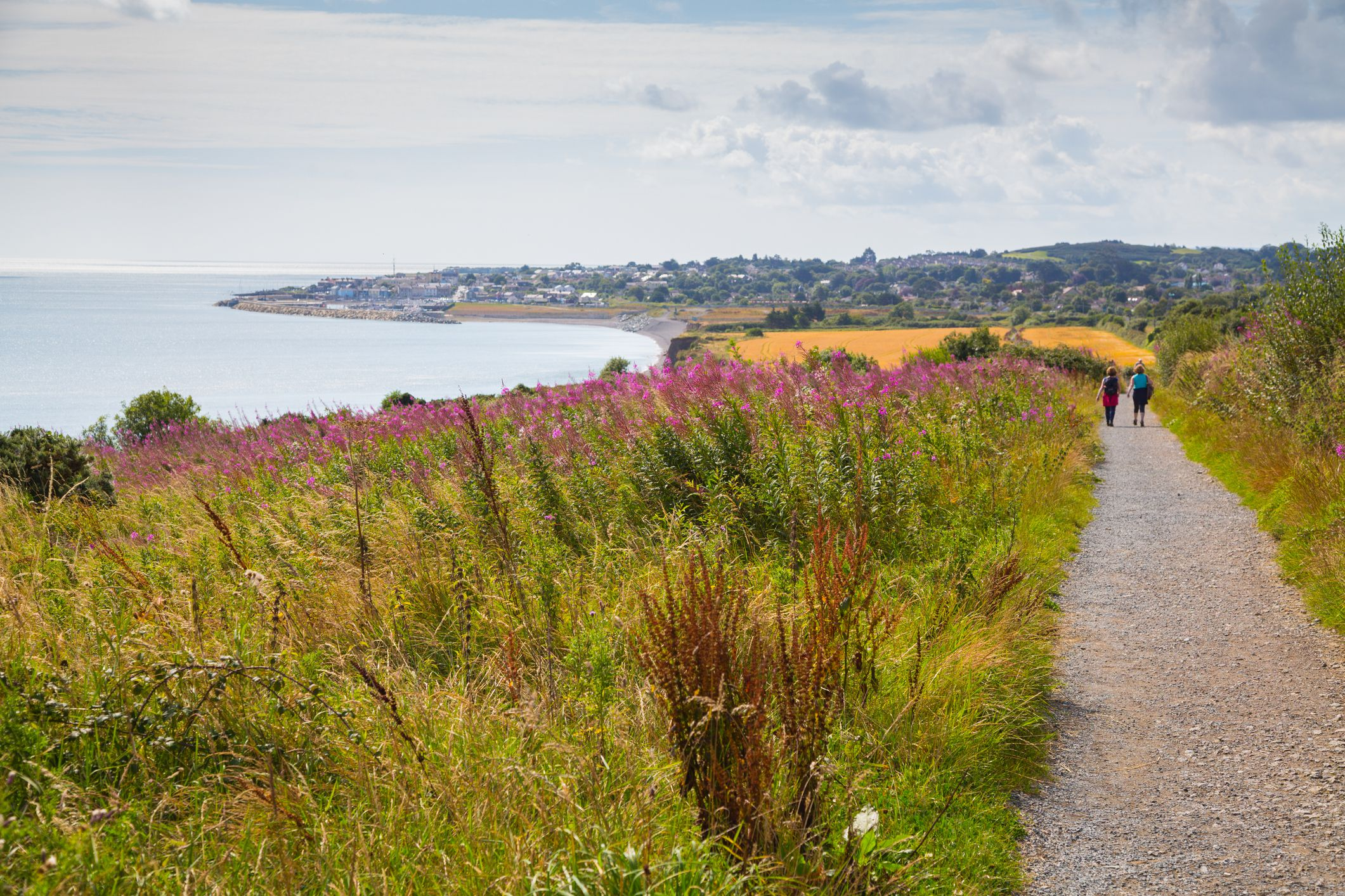 Walking trail at Greystones, Co. Wicklow