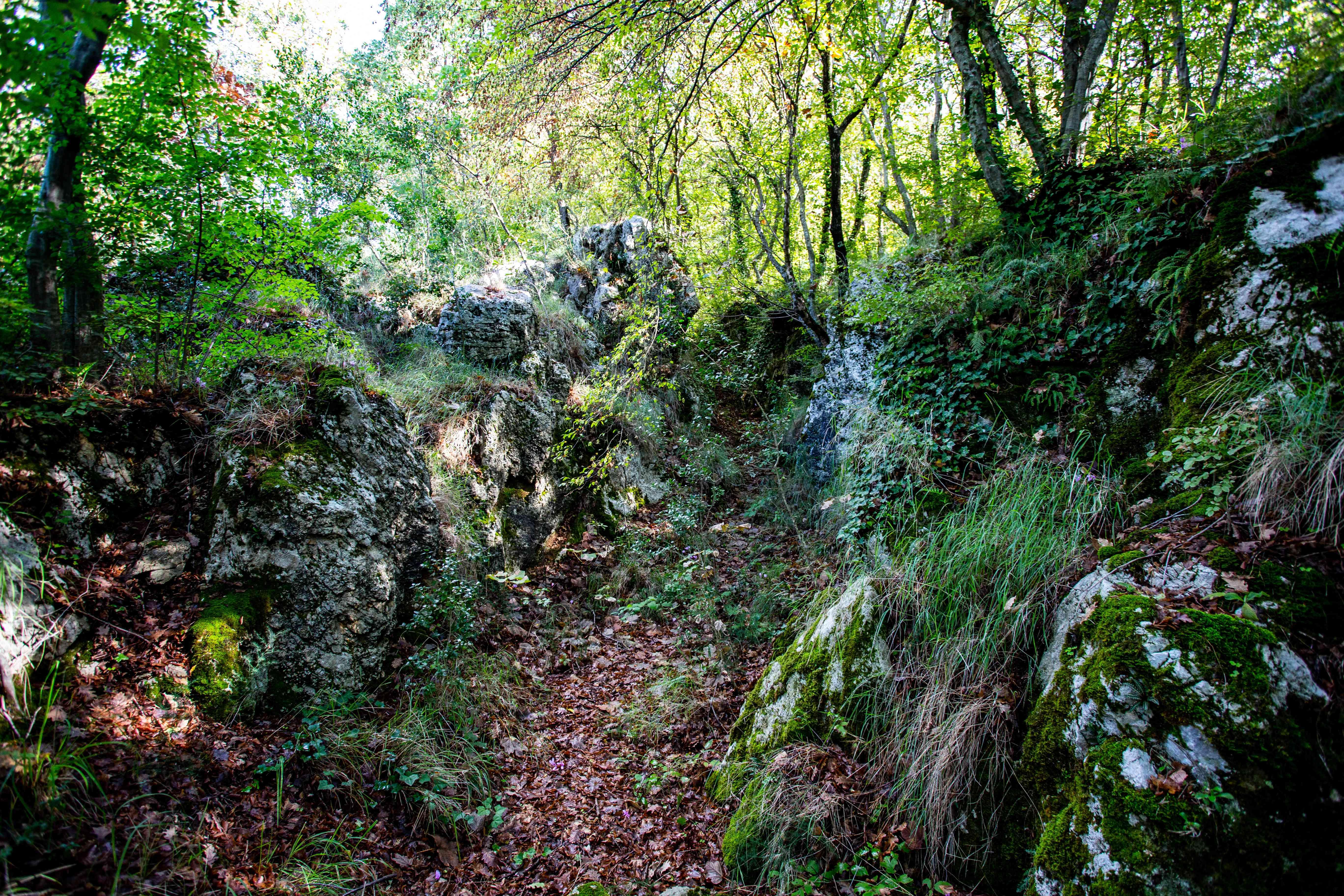 Parco Naturale Diecimare in Salerno, Italy